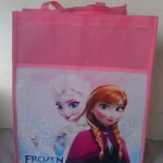 Kegemaran Anak Goodie Bag Frozen