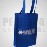 goodie bag spunbond - HT